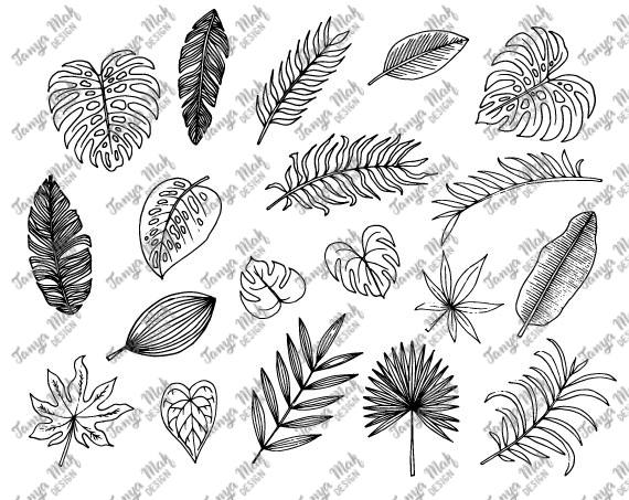 Handdrawn Tropical Leaves Scrapbook Cliparttropical Leaves Etsy How To Draw Hands Leaf Clipart Tropical Flowers Illustration Find the perfect tropical leaves white background stock illustrations from getty images. pinterest