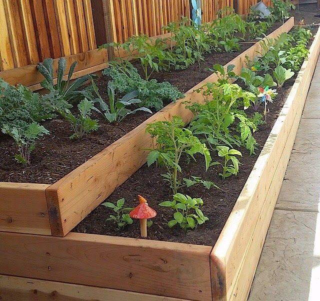 Caffeine and Giggles Our Garden Vegetable garden diy