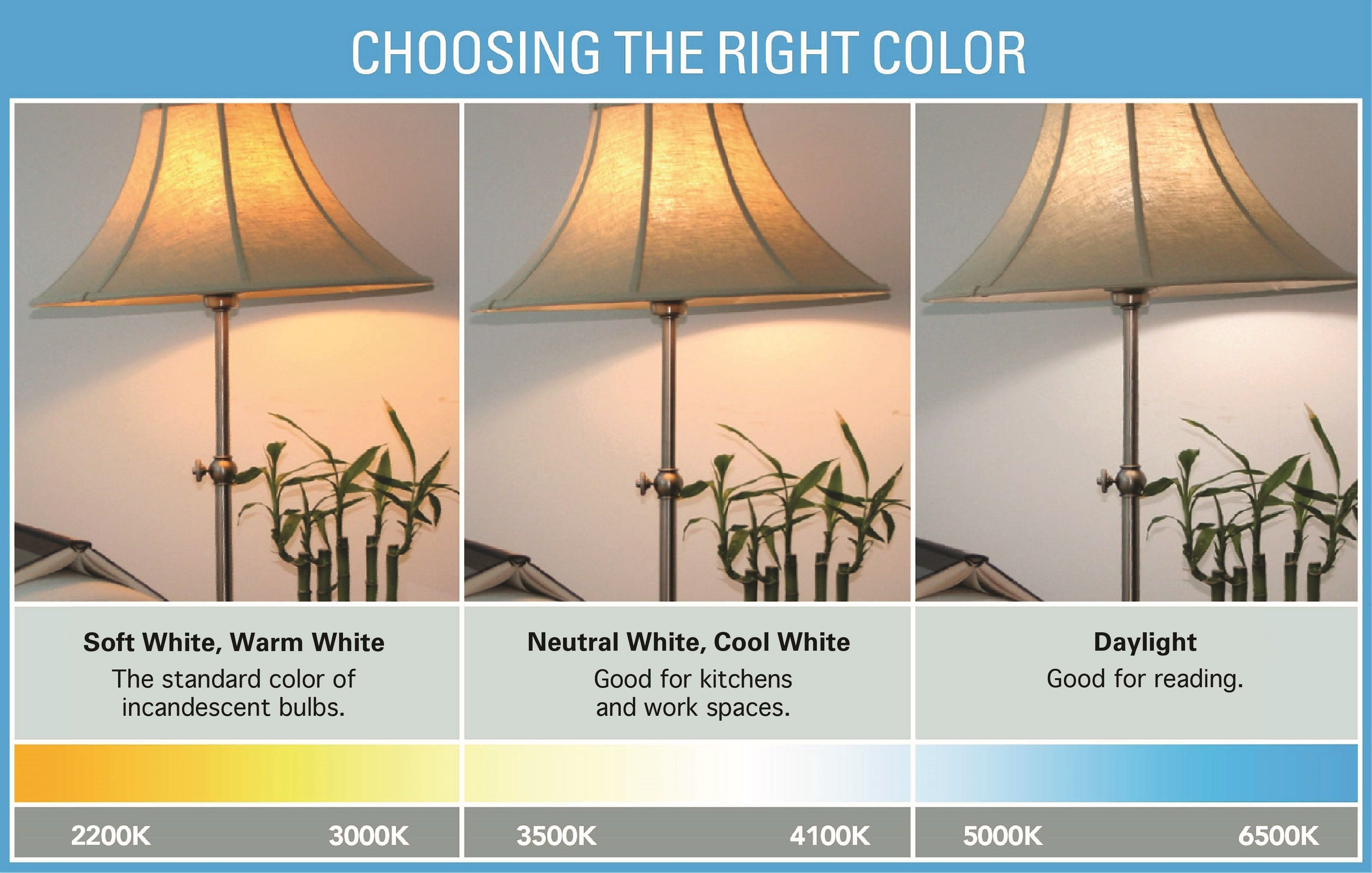 Kitchen Light Bulb Color Temperature White Light Bulbs Choosing Light Bulbs Bulb