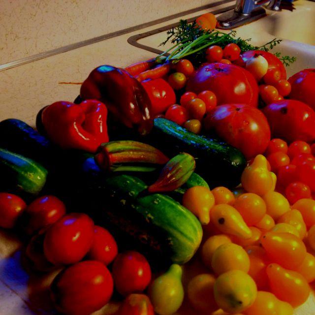 Fresh Vegtables!