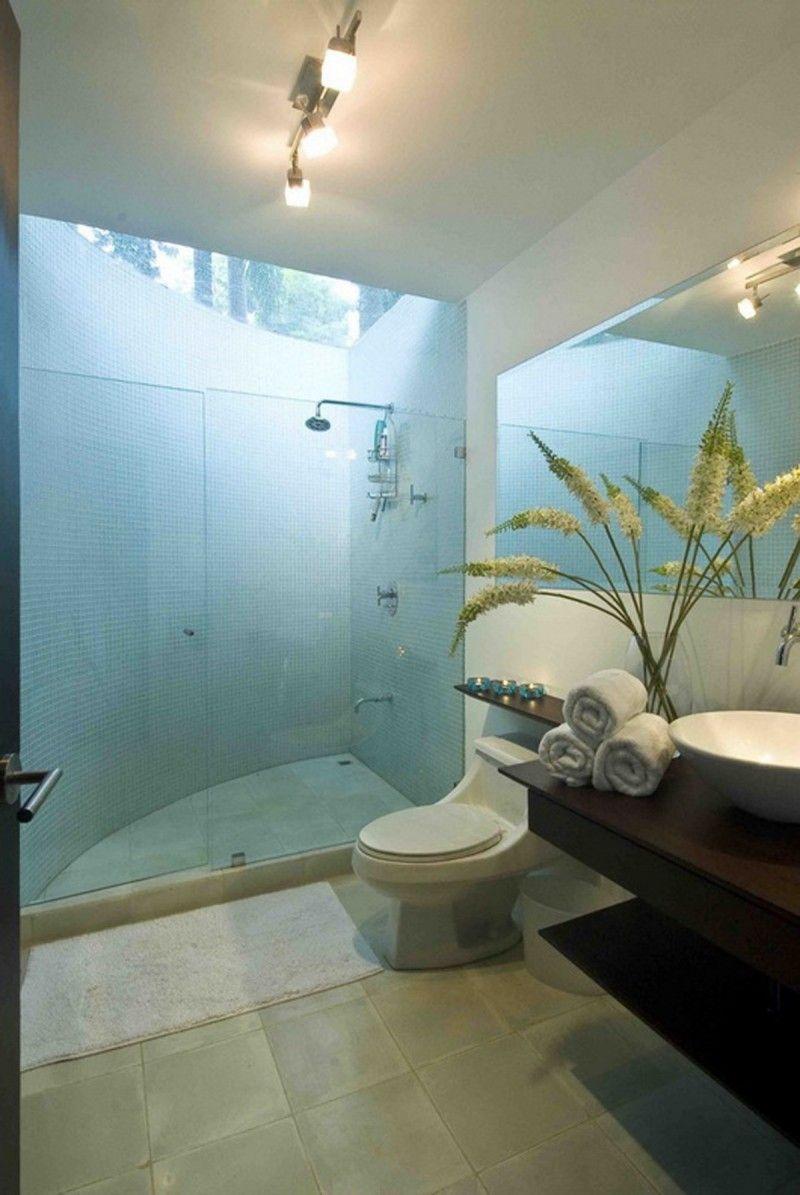 Modern Bathroom Design with Skylight Above Shower | Interior Design ...