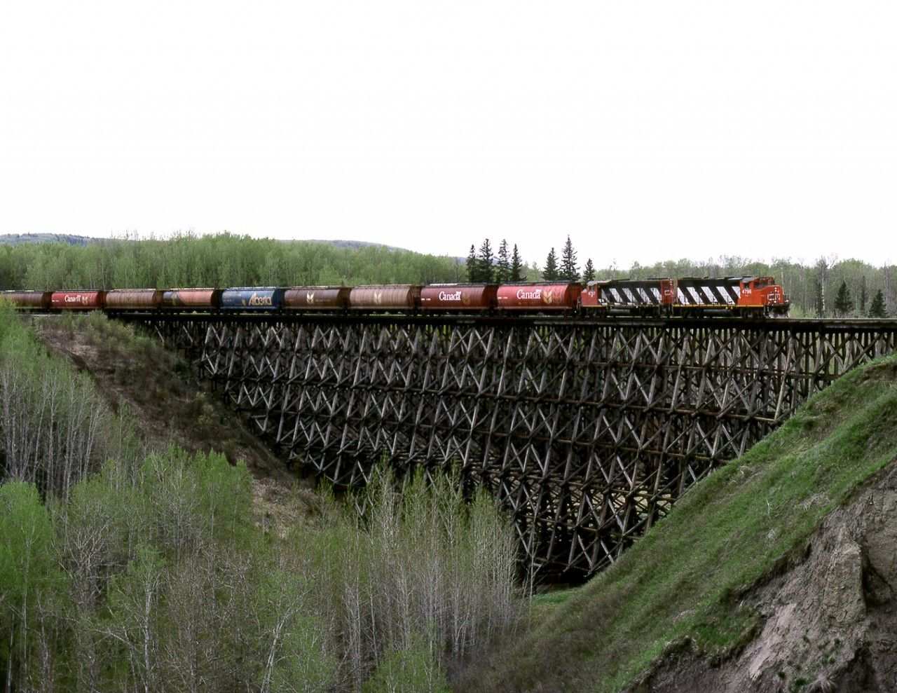 Bi weekly Grande Prairie to Dawson Creek wayfreight crosses a curved wooden trestle just east of the village of Pouce Coupe BC. Service was on the line west of Hythe Alberta was discontinued at the end of May 1999 with Dawson Creek being serviced from the BCOL end. The line is still out of service even though the Province of Alberta paid for an upgrade.