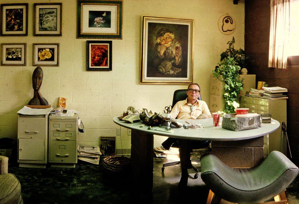 Office Cozy Plants Messy Paintings Office Decor Decor Retro Office