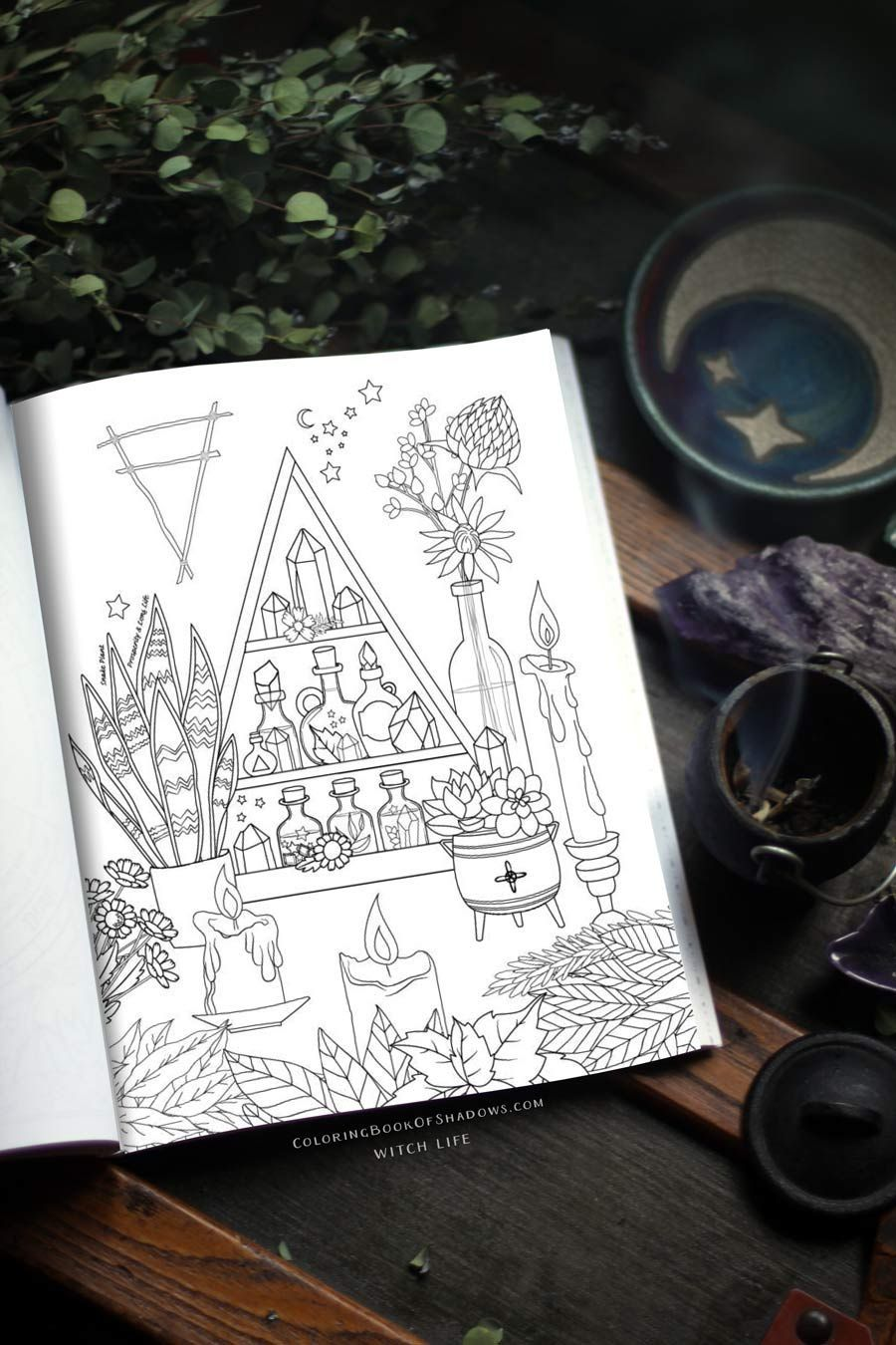 Book of Shadows ideas - Witch Life is a coloring book with grimoire pages,  spellcraft, inspiration, and witchy things to do