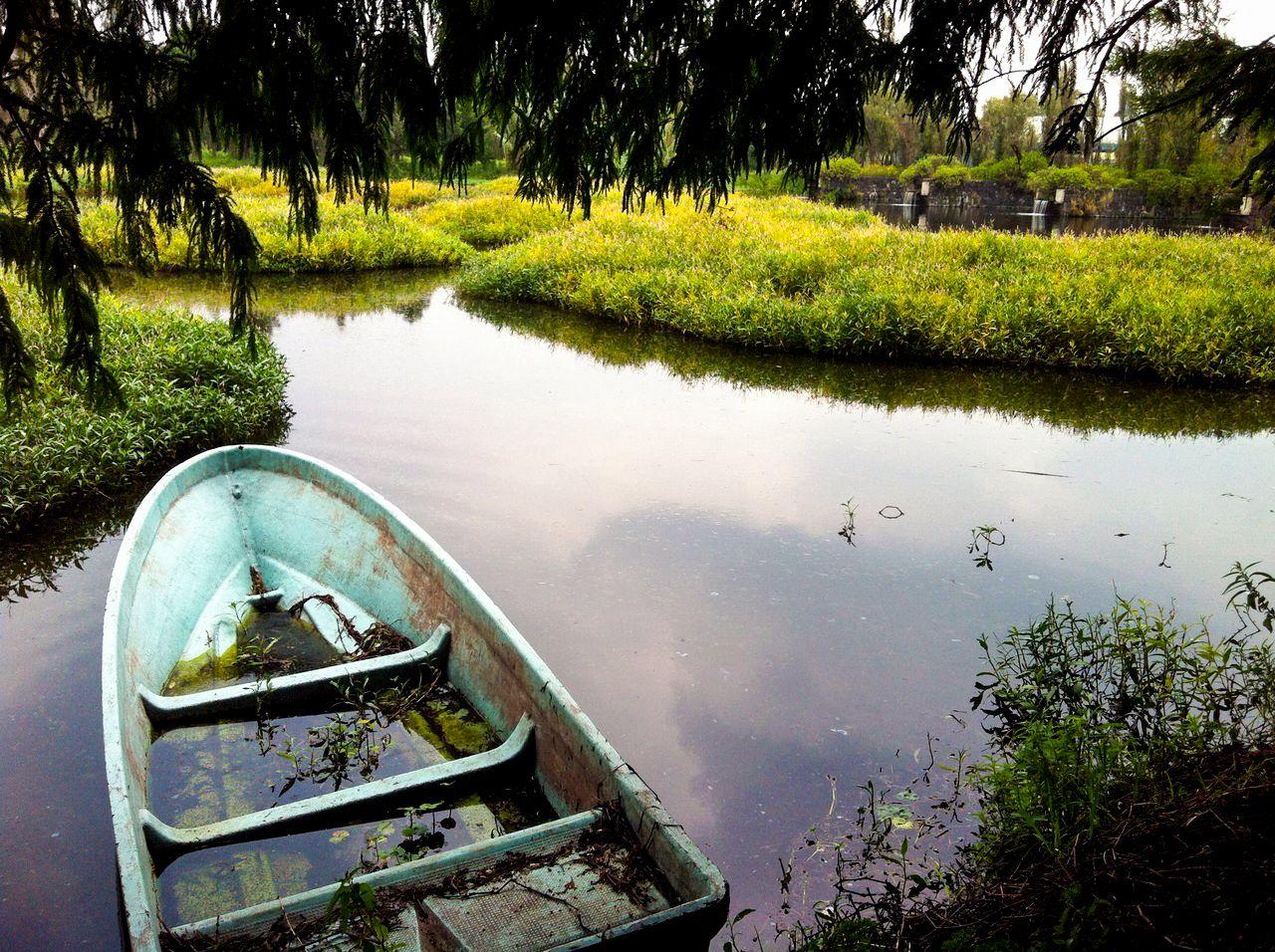 Parque, ecologico, xochimilco, verde, Park, ecological, green, bote, abandonado, lago, agua, boat, abandoned, lake, water