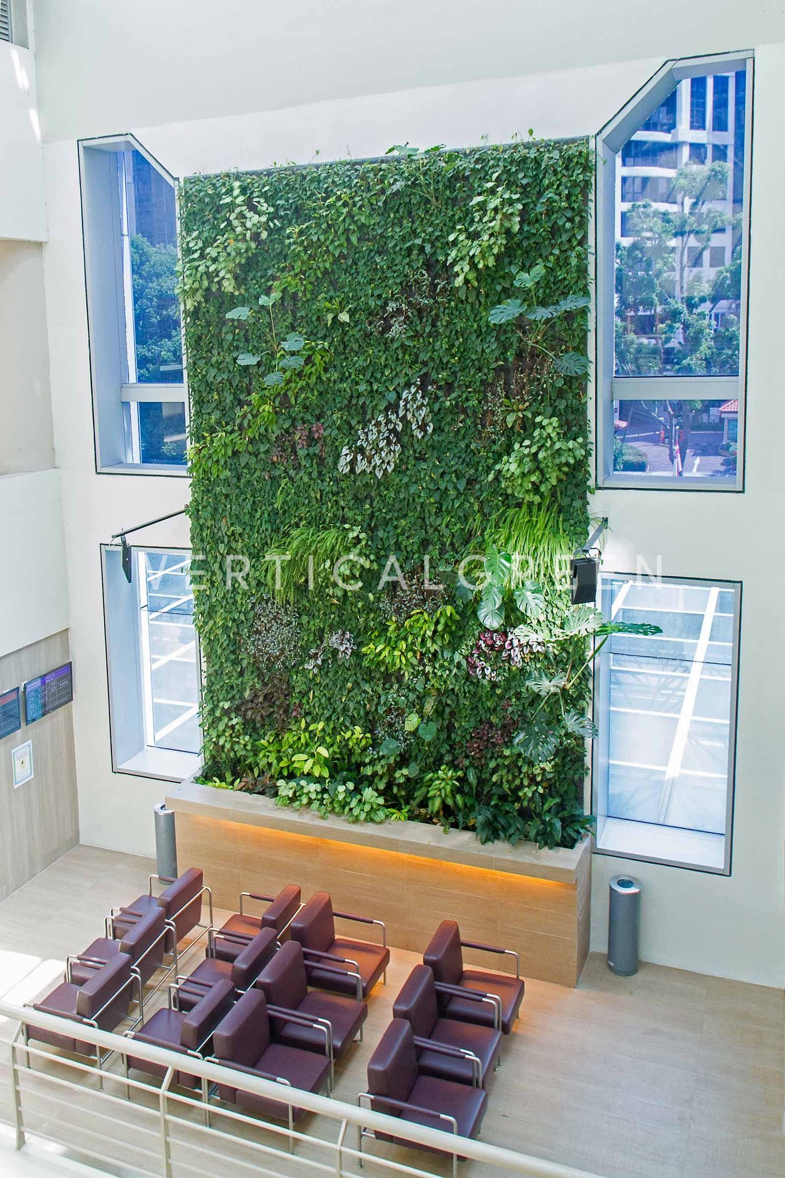 Changi General Hospital Singapore Living Green Wall Vertical Garden Green Wall