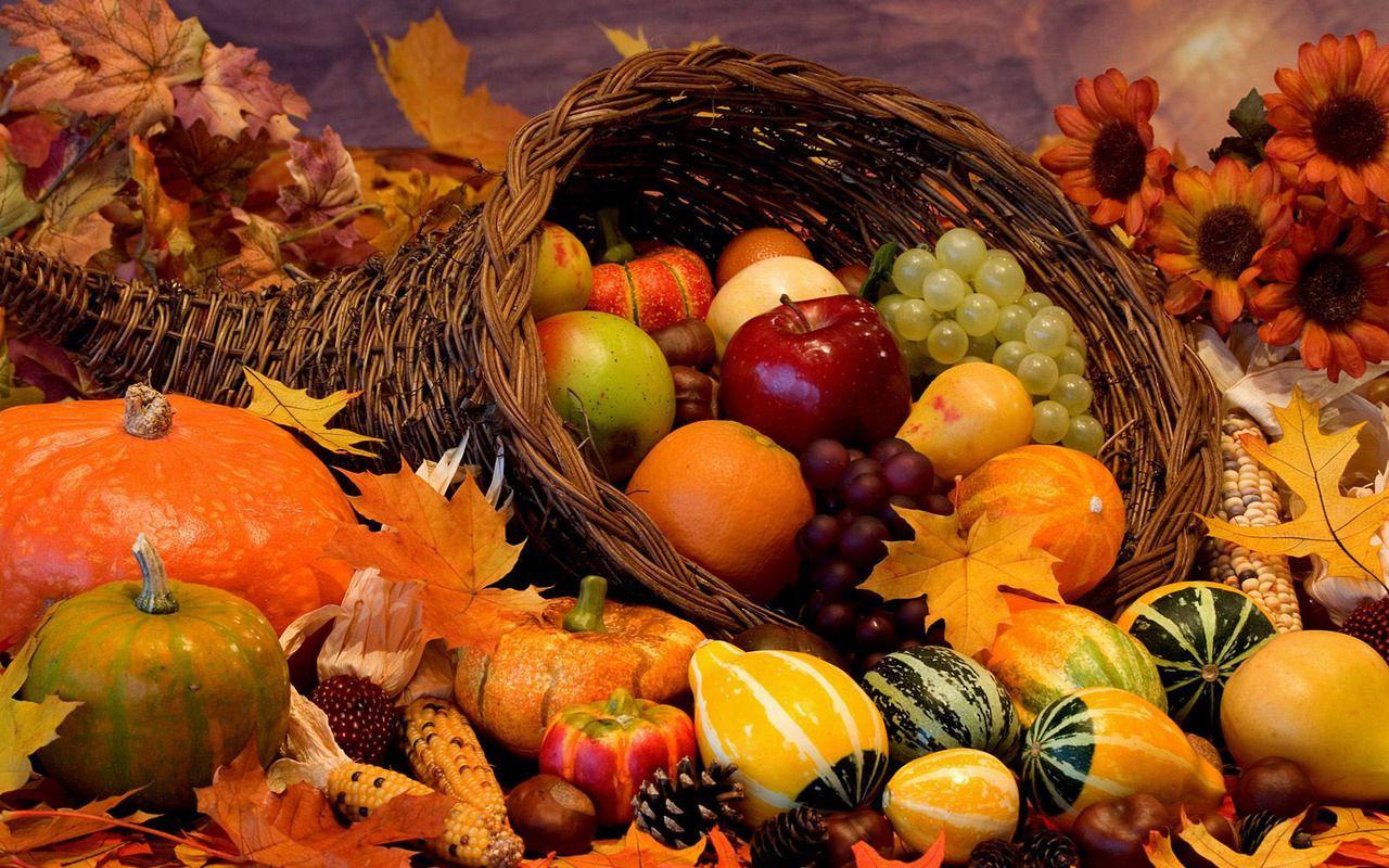 Pumpkin Season : Photo