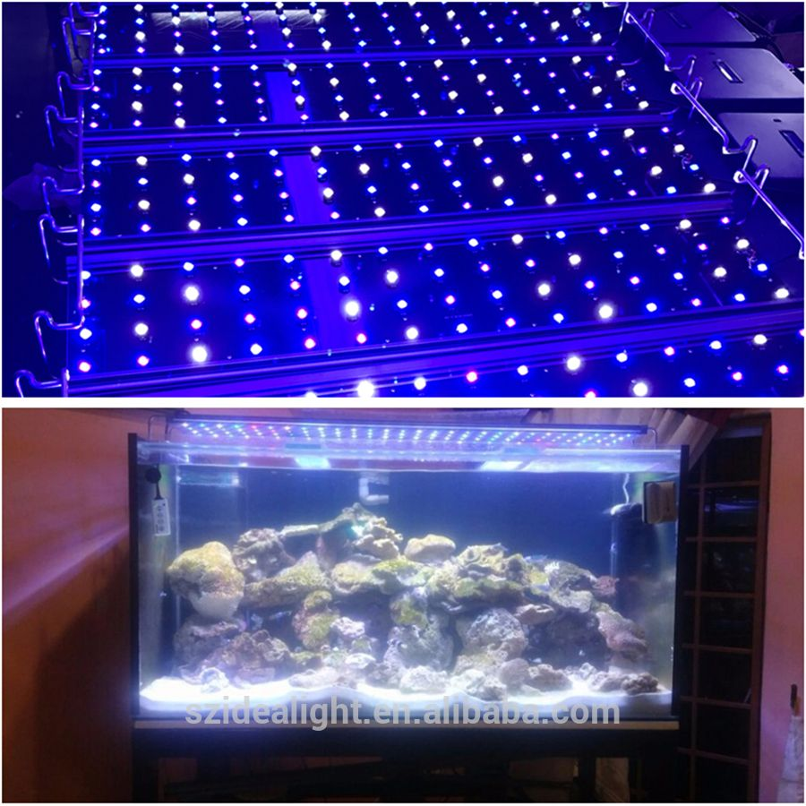 éclairage Led Aquarium 120 Cm Pin By Yuffy On Led Aquarium Light Led Aquarium Lighting