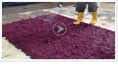 Persian Rug Cleaning Effective Persian Rug Cleaning for Stained Rugs For a Persian rug owner, it is important to know that the best way to deal with a stain is to treat it immediately so that your rug will be saved from damage or discoloration.