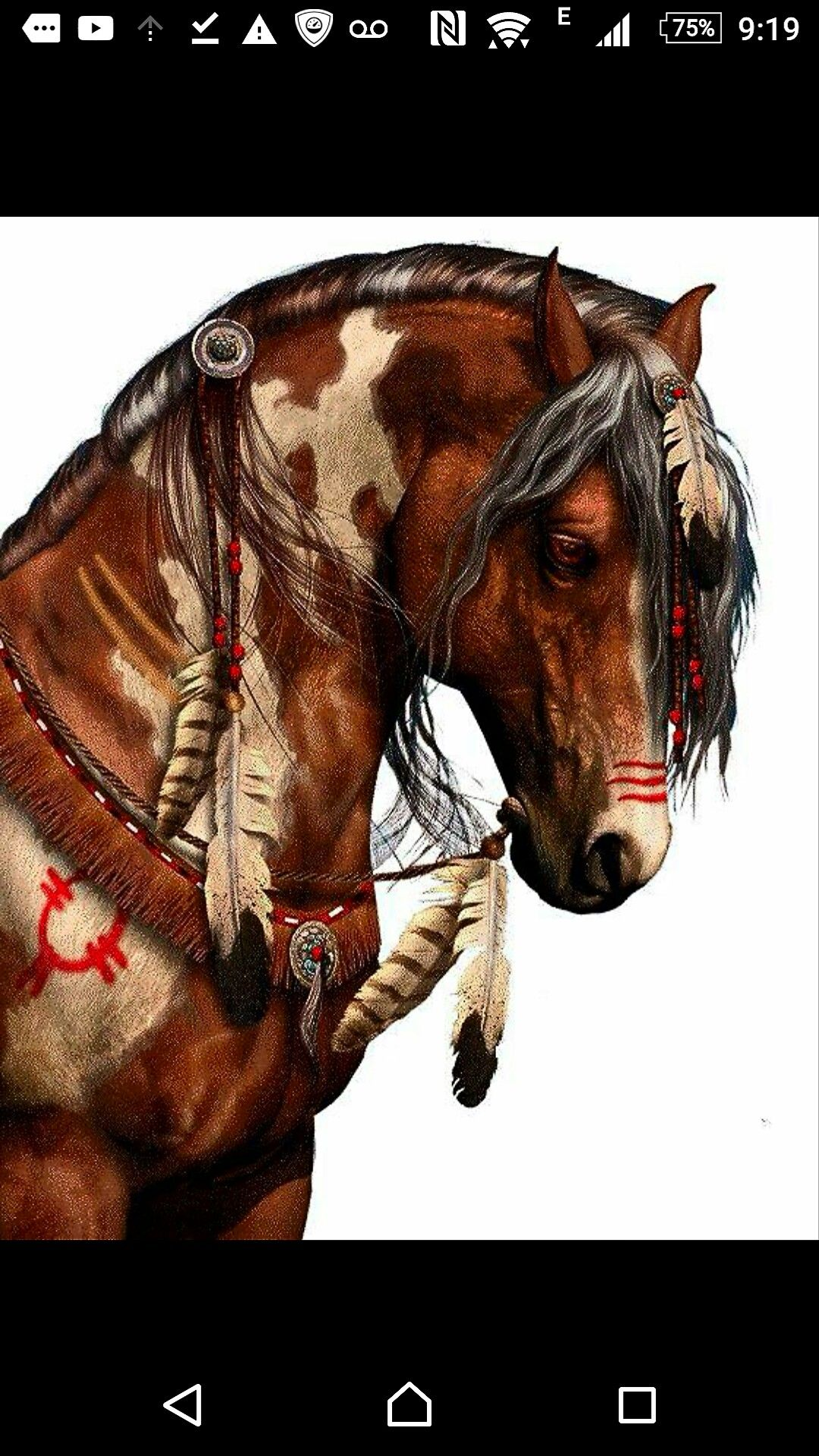 2930d6b6bf74e American Indian Art, Native American Artwork, Native American Drawing, Native  American Horses,