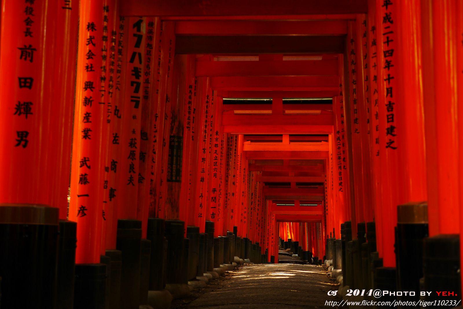 https://flic.kr/p/ocEK1M | Kyoto-Red torii