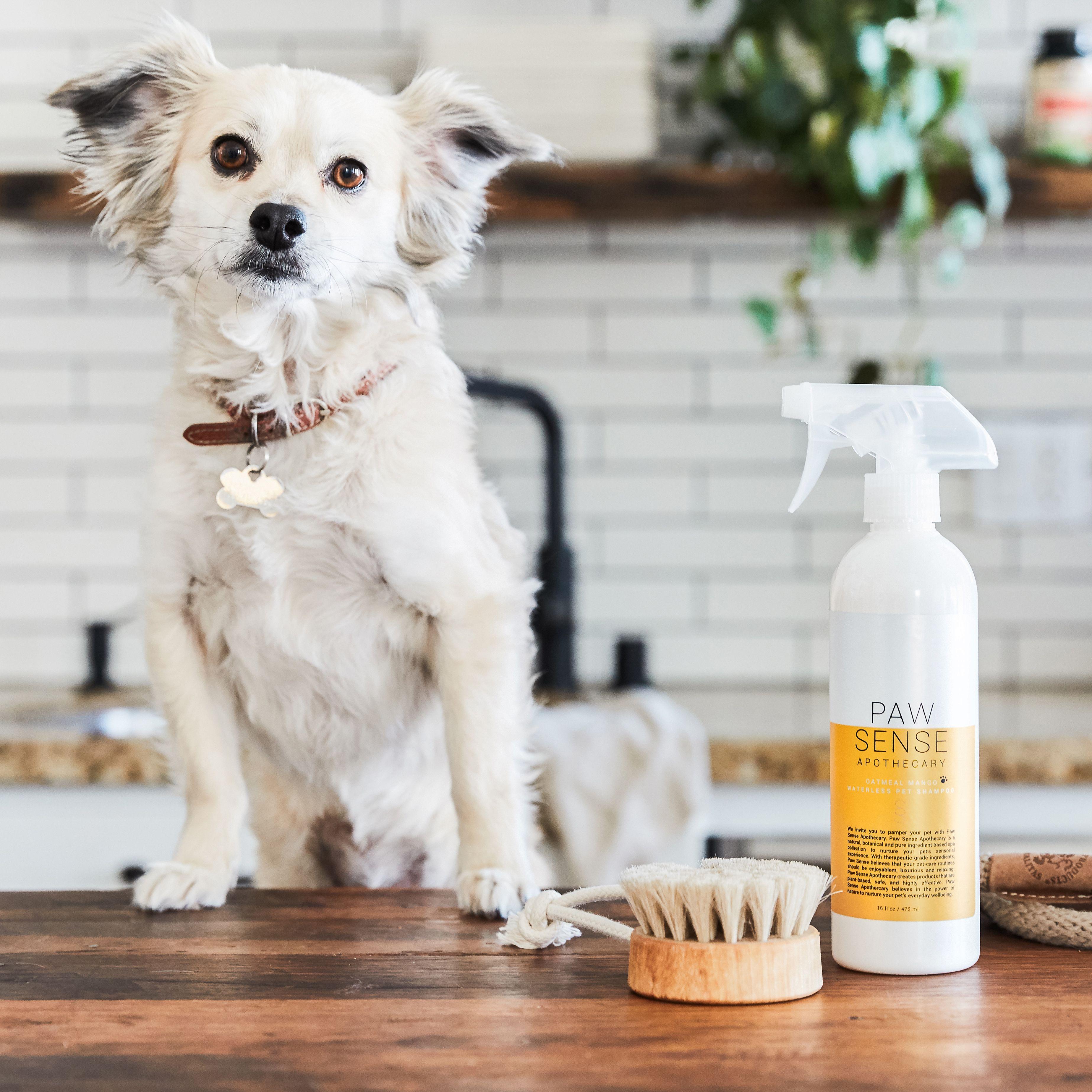 Paw Sense Waterless Pet Shampoo Pet Shampoo Pets Grooming Tools