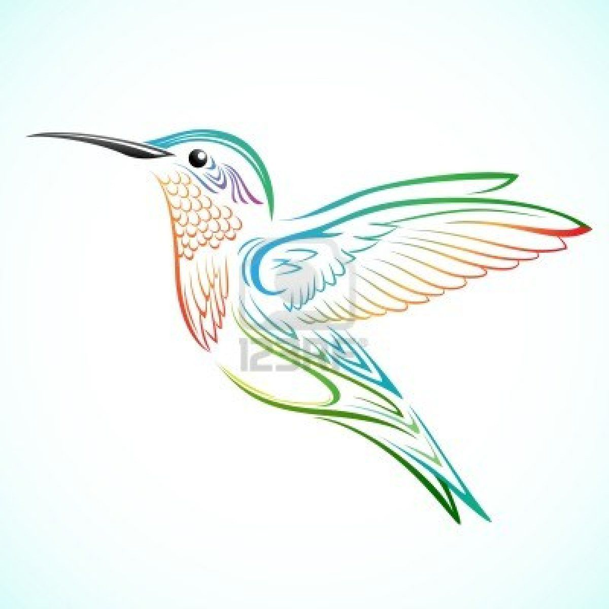 Image Detail For Colorful Hummingbird Royalty Free Cliparts