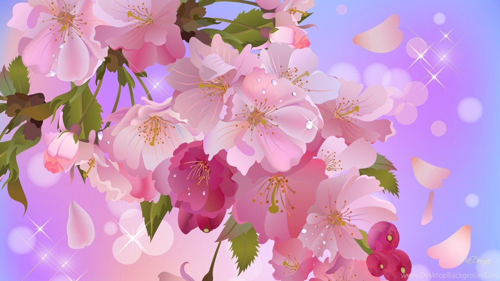 Sweet Cute Wallpapers Widescreen Cute Wallpapers Apple Blossom Sweet Pic