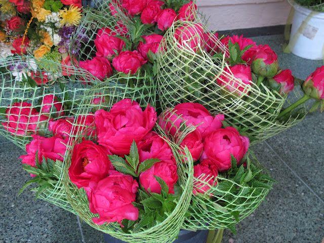 Ciao Domenica: An Abundance of Flowers