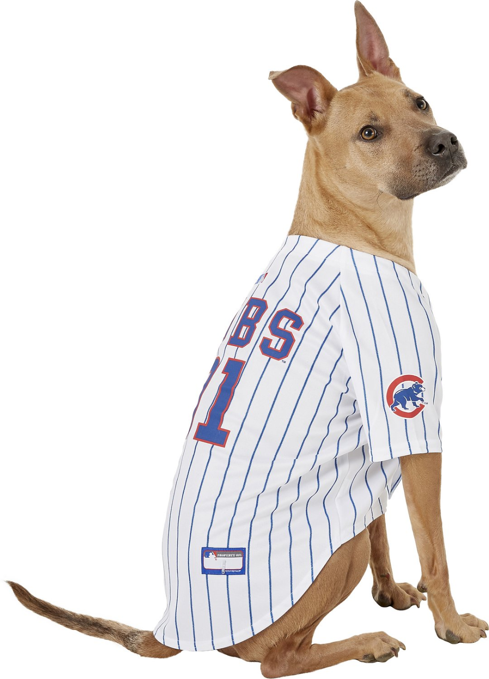 Pets First MLB Dog & Cat Jersey, Los Angeles Dodgers