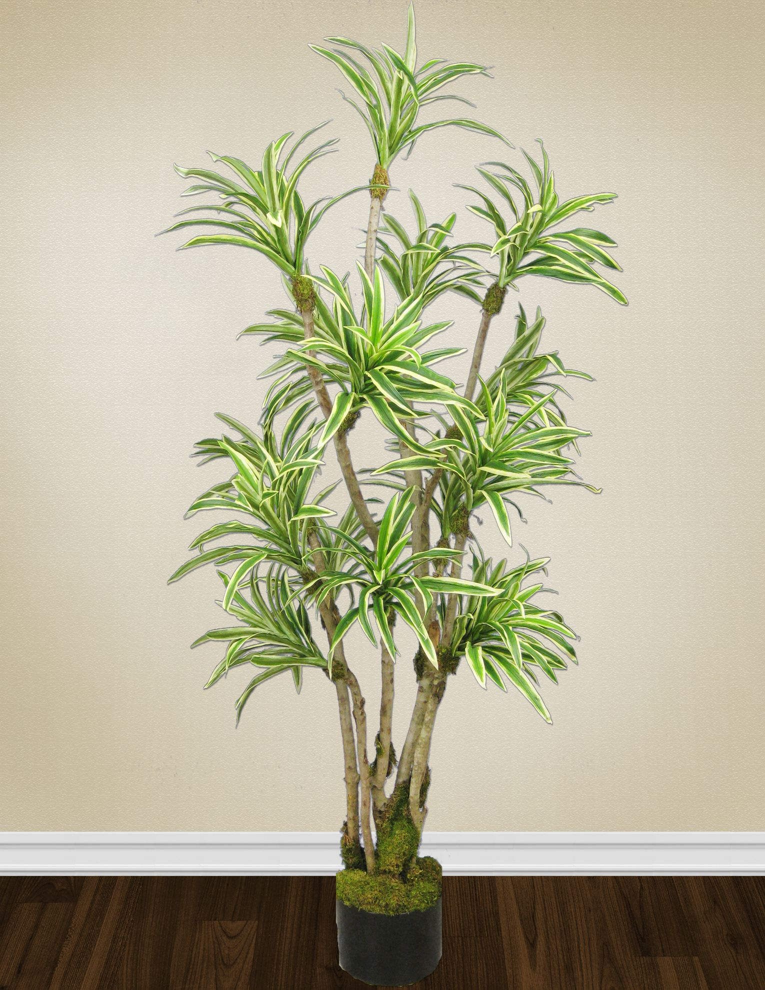 A Variegated Yucca hand-crafted by the Aldik Home's talented tree-makers. Visit www.aldikhome.com for more information.