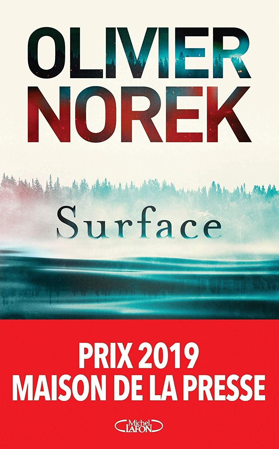 Surface Ebook Olivier Norek Amazon Fr Amazon Media Eu S A