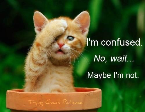 Ever feel that way : )