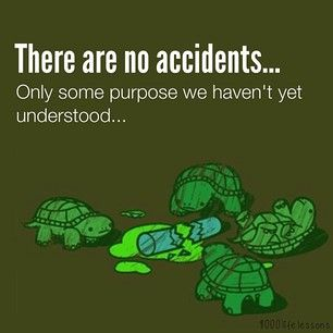Ninja Turtle Quotes Custom 1000Lifelessons's Twenty20 Gallery  Buy 1000Lifelessons's