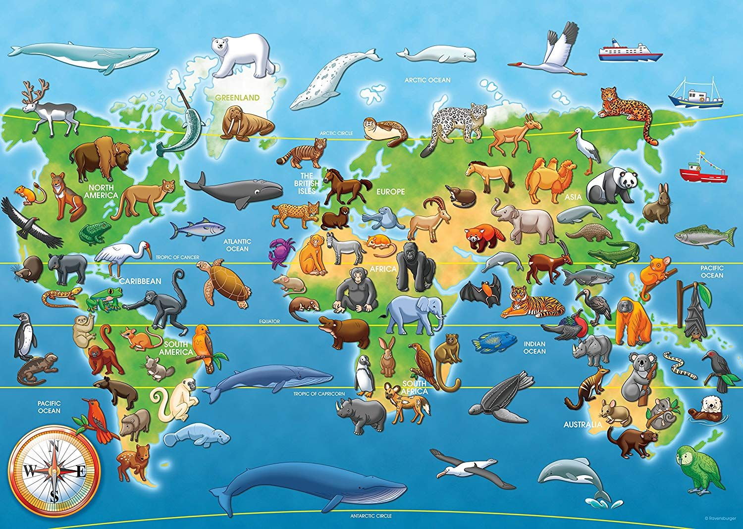 Pin By Blue Star Treats On Childrens Jigsaws