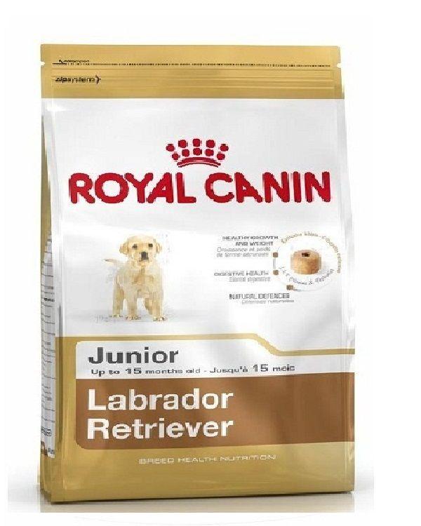 Royal Canin Dog Food For Junior Labrador Retriever 12 Kg Royal Canin Dog Food Dog Food Recipes Dog Food Online