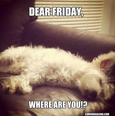 thank god its friday quotes funny