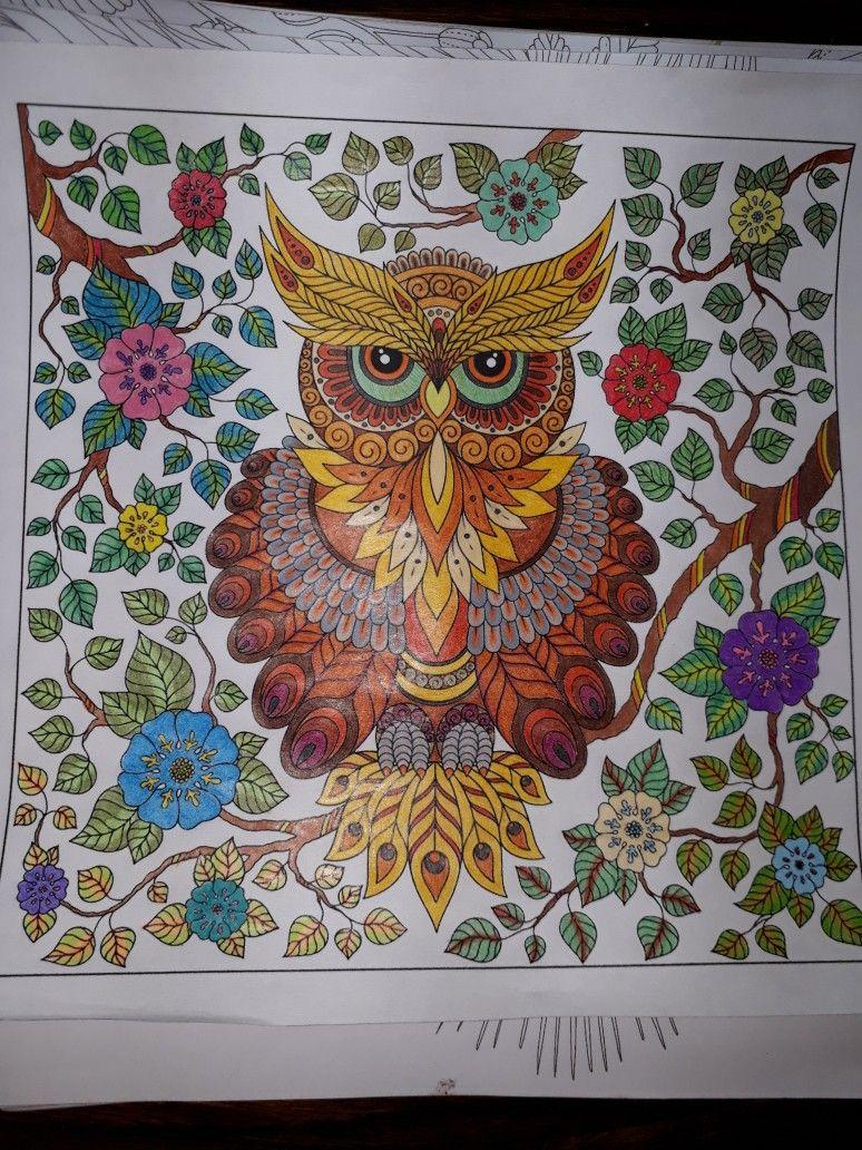 Mandala De Buho Pintado En Casa Buhos Pintados Mandala De Buho