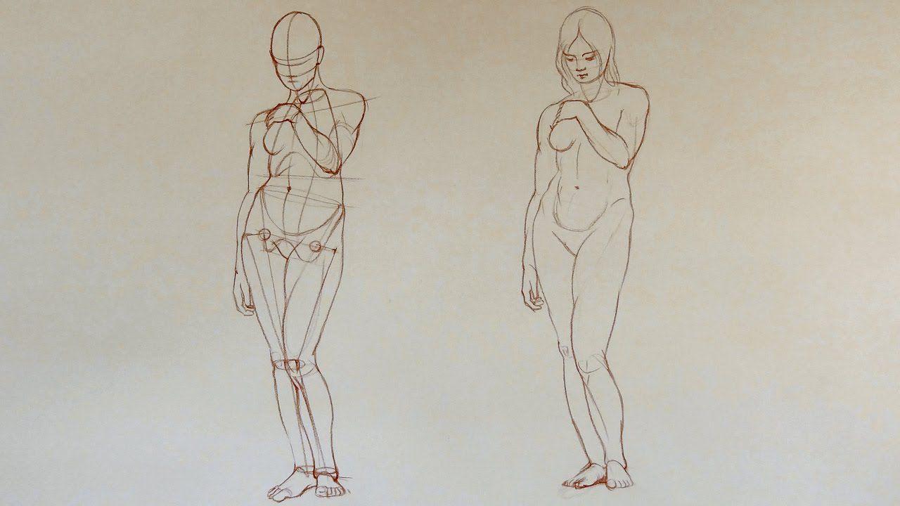 Female Anatomy - Anatomy Master Class | DRAWING THE HUMAN BODY ...