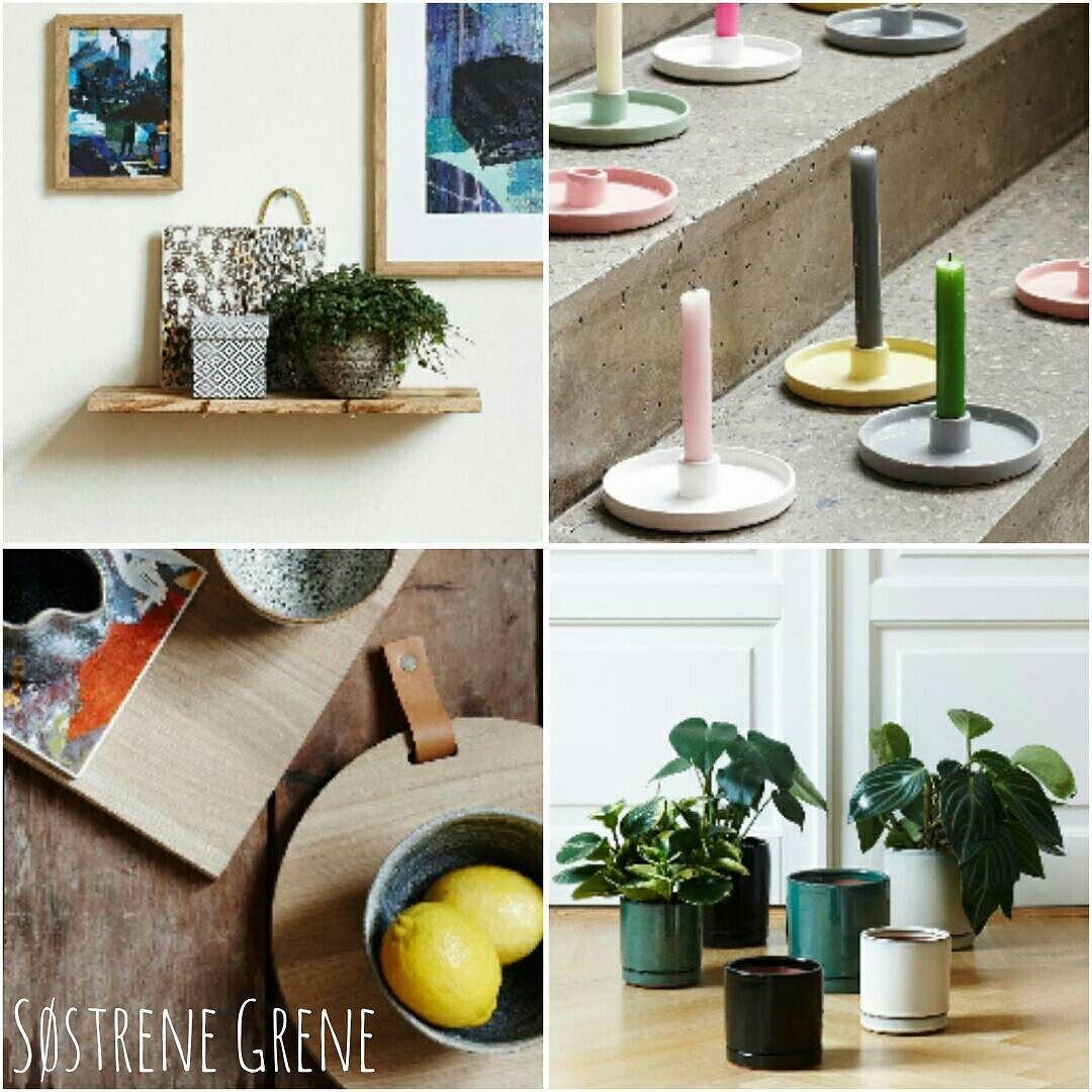 Vanaf vandaag ligt de nieuwe collectie Søstrene Grene in de winkels! Dit zijn mijn favorieten: Wandplank: 478 Kandelaar: 342 Snijplank met leren handvat: 1369 Bloempot: vanaf 419 Wat is jullie favoriet?