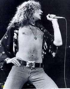 The beautiful Robert Plant