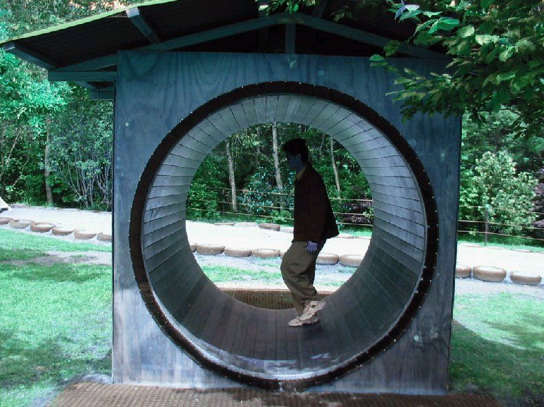 Human Hamster Wheel We Used To Have One Of These In The Park