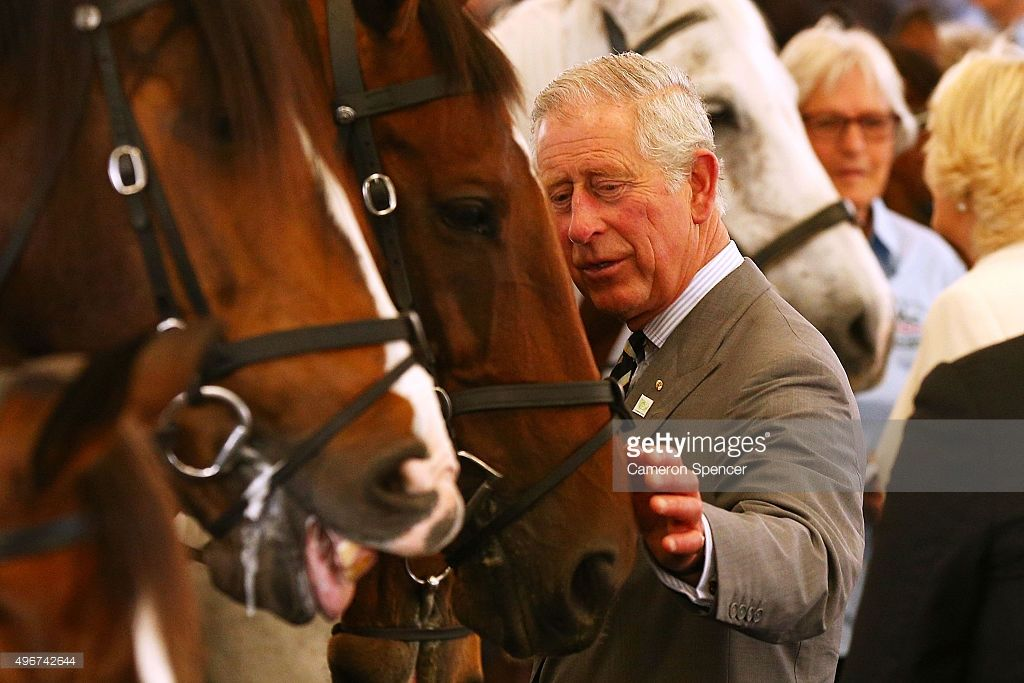 Prince Charles horses | Prince Charles, Prince of Wales inspects police horses during a visit ...