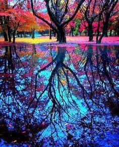 Colours of the rainbow  Crear una imagen y hacer un efecto espejo donde se pueden usar diferentes tonos para cada lado, es decir, lo que vemos y lo que se refleja en el espejo.