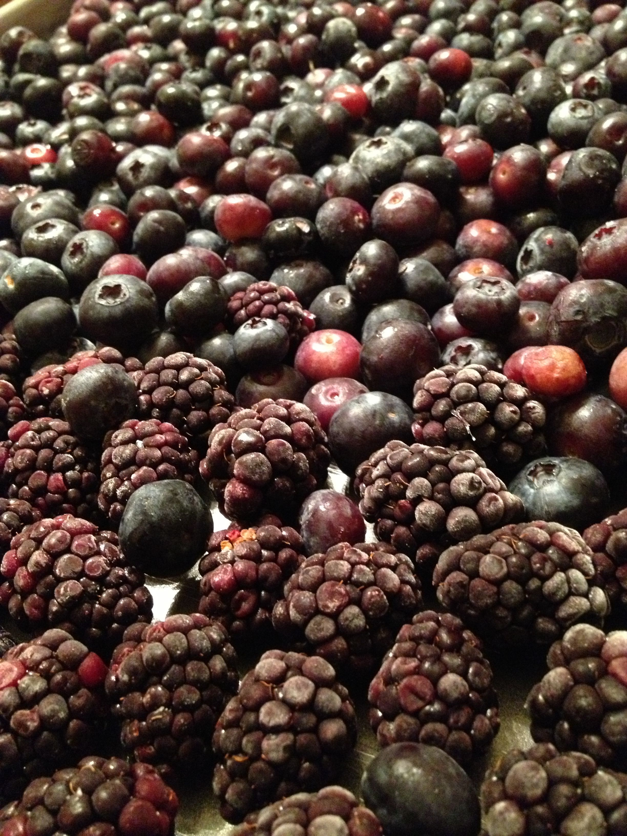 Freezing blackberries and blueberries for a weeks worth of