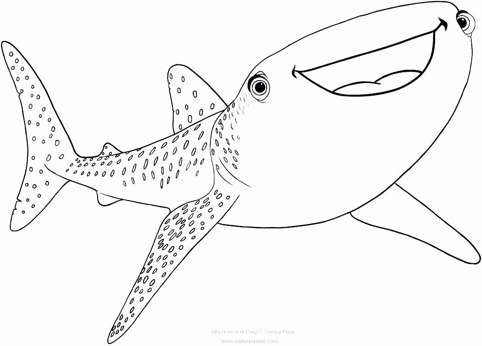 Great White Shark Coloring Page Lovely Realistic Shark Coloring Pages At Getcolorings Shark Coloring Pages Whale Coloring Pages Animal Coloring Pages
