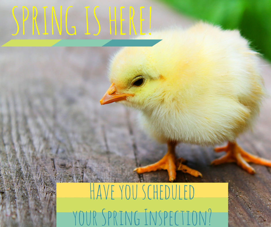 Spring Has Sprung Get Your Spring Inspection Taken Care Of Today