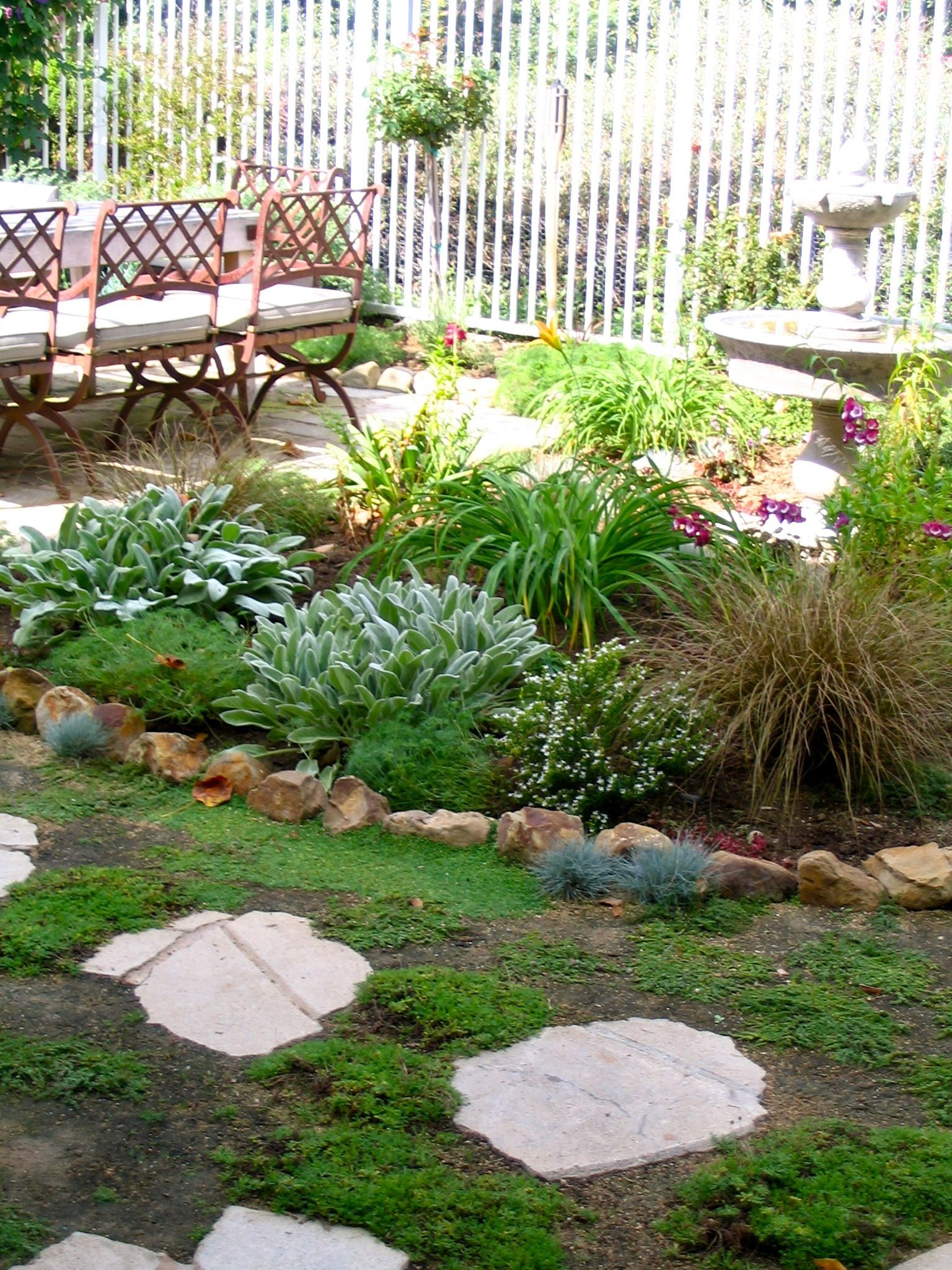 Fountain garden with low water plants Small backyard