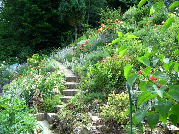 Hilfe Bei Gartengestaltung update fotos der steinmauer südhang an der terrasse bitte um