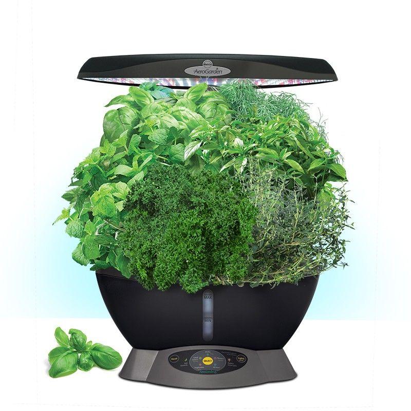 Miracle Gro Aerogarden Classic 6 Herb Garden Kit Indoor 400 x 300