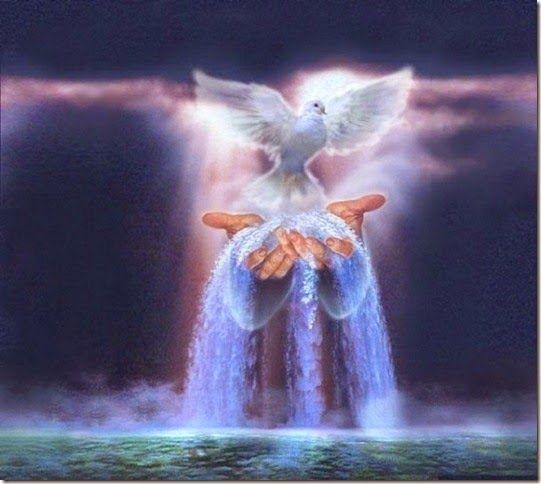 Salmos - Proverbios e passagens da Bíblia: Evangelho comentou, «A água que lhe der, tornar-se...