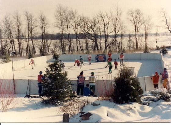 Backyard Ice Rinks. Build a home ice rink and bring on the ...