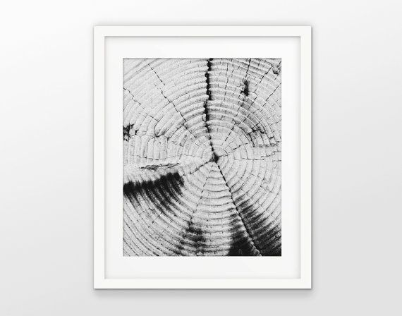 Tree Rings Print - Black And White Grayscale Printable Art - Modern White Linen Effect Photo Collage - INSTANT DOWNLOAD #2375