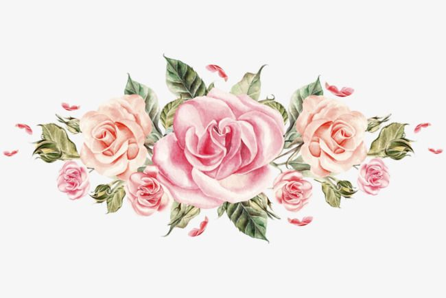 Colored Roses Hand Painted Flowers Rose Png Image And Clipart Pink Flower Pictures Flower Art Flower Painting