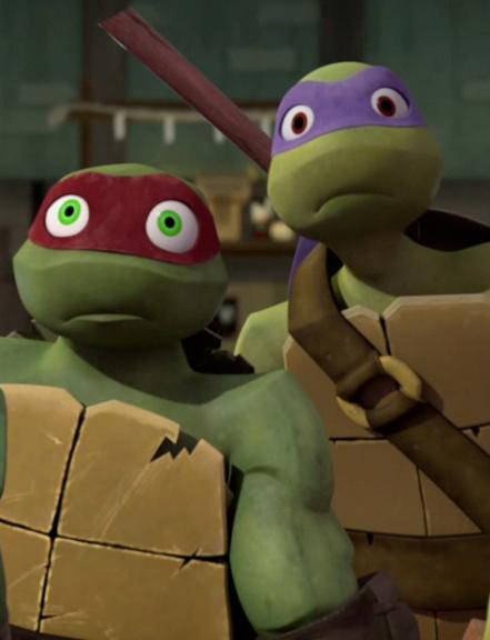 Donnie And Raph Tmnt Ninja Turtles Teenage Mutant Ninja Turtles