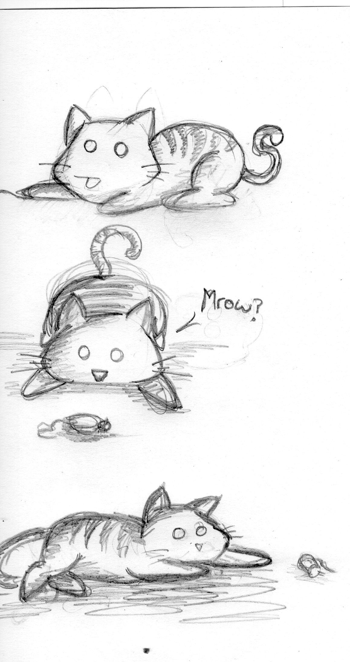 A couple of sketches of kinda chibi cats.