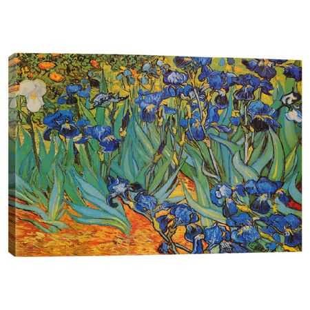 Add gallery-worthy appeal to your walls with this canvas print of Vincent van Gogh's Irises.   Product: Wall art