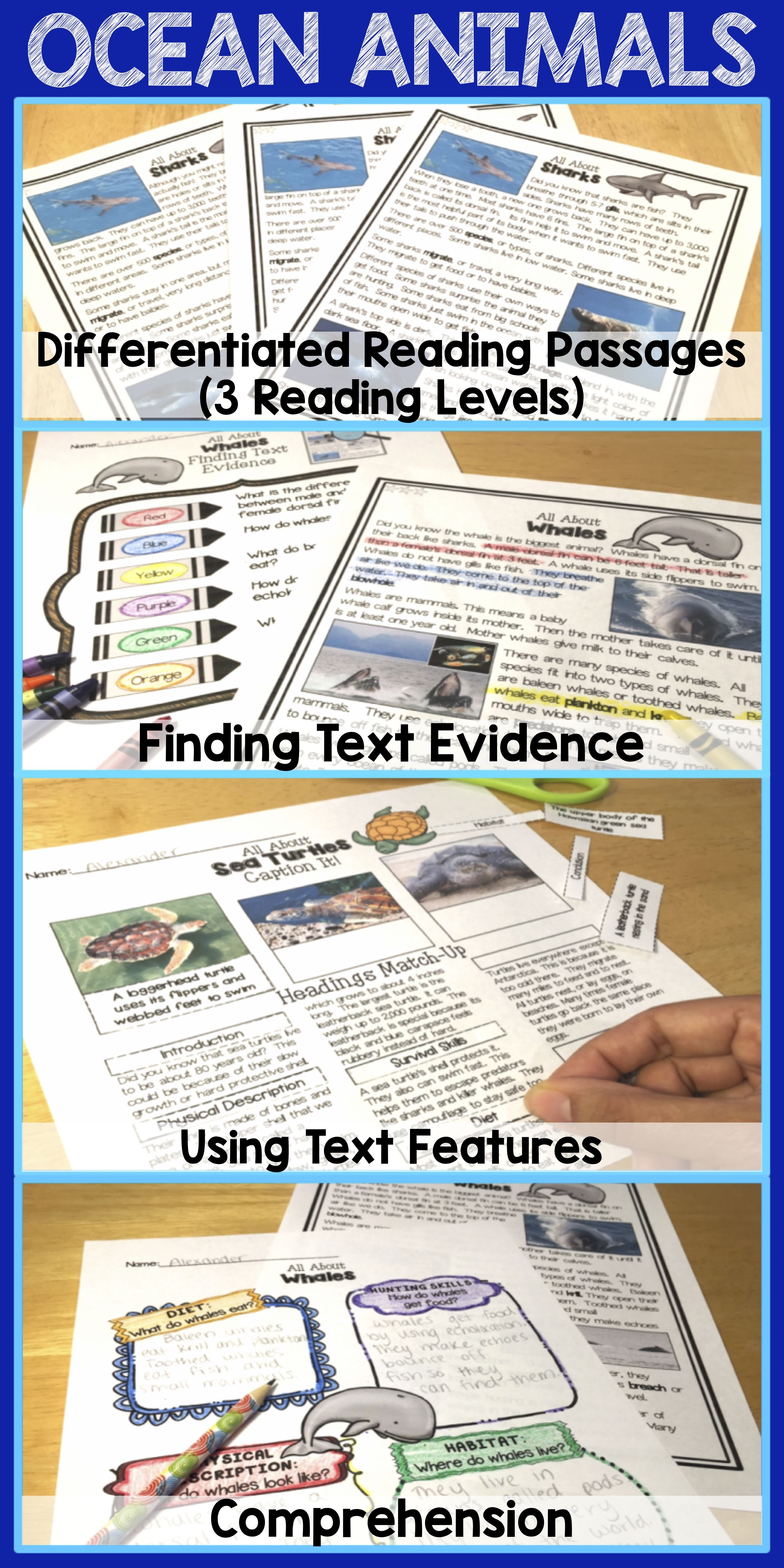 Differentiated Ocean Animals Unit Reading Comprehension Passages And Questions