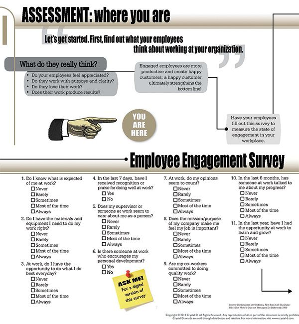 Employee Engagement Made Easy  Step   Assessment  Management