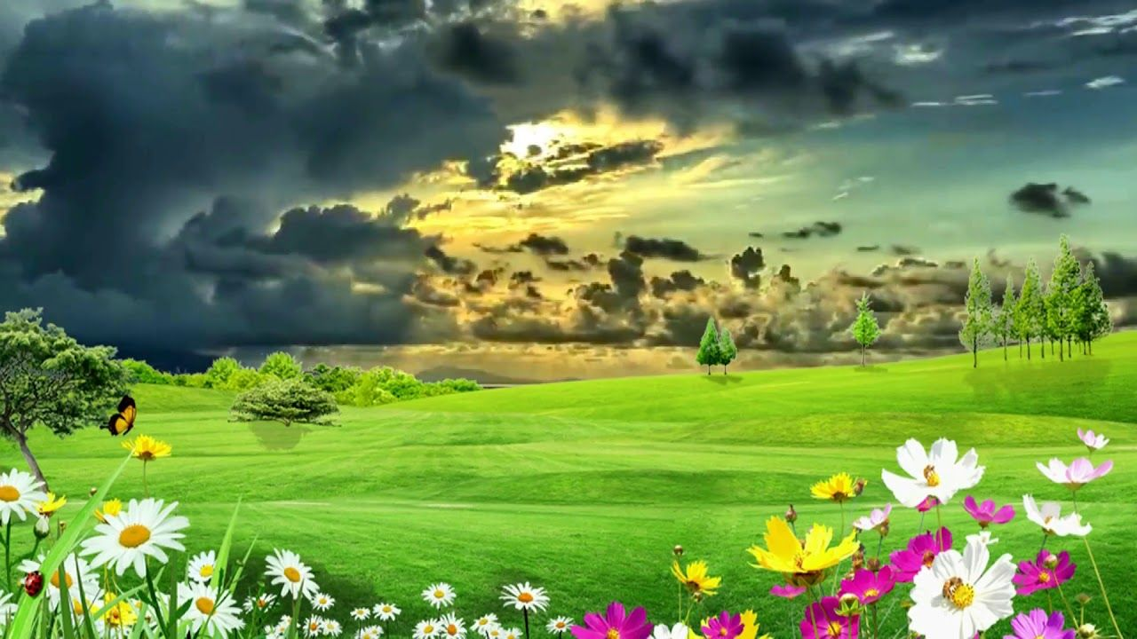 Beautiful Nice Animation With Natural Scenery Dream Background Video 724 Scenery Background Photoshop Backgrounds Dream Background